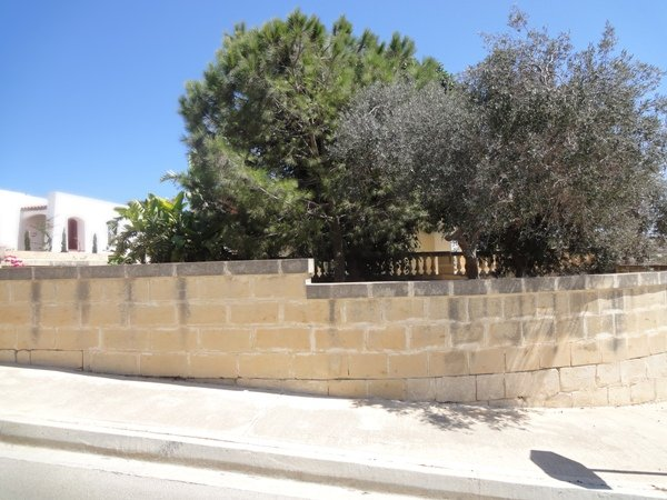 garden in Mellieha real estate