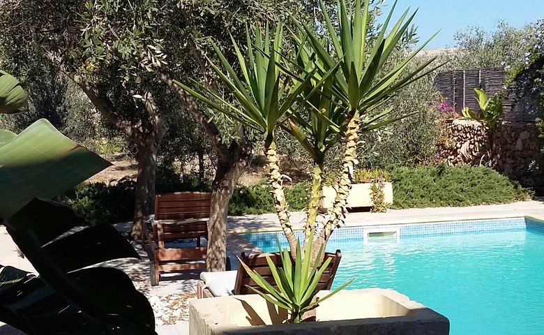 Gozo property: garden with pool